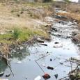 Torreón .- El Gerente de Cuencas Centrales de la Comisión Nacional del Agua, Celso Castro, señala que la dependencia gestionará 50 millones de metros cúbicos de agua para la recarga […]