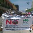 Xalapa, Ver. Más de treinta mil personas resultarán afectadas con la construcción de la hidroeléctrica El Naranjal, al norte del estado. Organizaciones civiles denunciaron la violación de derechos humanos por […]