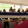 Sesiona en Temaca la pre audiencia de «Presas, Derechos de los Pueblos e Impunidad», TPP Guadalupe Espinoza Sauceda Durante los días 5 y 6 de noviembre se realiza en Temacapulín, […]