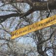 Guadalajara, Jal., 18 de marzo de 2014. BOLETÍN DE PRENSA Un grupo de investigadores interesados en la problemática por la gestión del agua en el río Verde tuvo como lugar […]