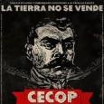 CONSEJO DE EJIDOS Y COMUNIDADES OPOSITORES A LA PRESA LA PAROTA (CECOP) 11º ANIVERSARIO Bienes Comunales Indígenas de Cacahuatepec, Acapulco, Gro. 23 de julio de 2014. La contrareforma constitucional […]