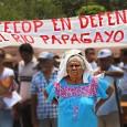 EL CONSEJO DE EJIDOS Y COMUNIDADES OPOSITORES A LA PRESA LA PAROTA (CECOP) saluda las acciones que están llevando a cabo el día de hoy en más de 15 estados […]