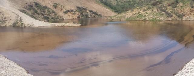 El pasado siete de agosto, se vertieron cuarenta mil metros cúbicos de ácido sulfúrico, proveniente de la presa de jales de la mina de cobre Buenavista, ubicada en el Municipio […]