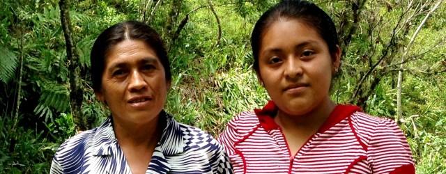 La familia Rodríguez López radica en el municipio de Olintla, en la Sierra Norte de Puebla, desde hace tres generaciones. Vive cerca de la plaza del mercado, donde se llevó […]