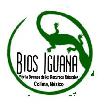 El Movimiento de Afectados por las Presas y en Defensa de los Ríos (MAPDER), Bios Iguana A.C. y el Consejo Indígena por la Defensa del Territorio de Zacualpan (CIDTZ), nos […]